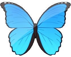 Morpho image